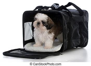 旅行, 運送者, 小狗
