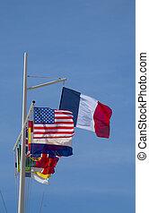 旗, 世界
