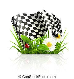 旗, checkered, 草