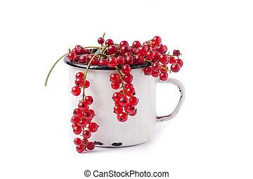 无核小葡萄干, 红的杯