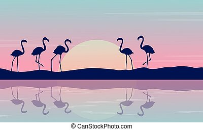 日の出, フラミンゴ, 川岸, 風景
