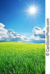 日の出, 中に, grean, 牧草地