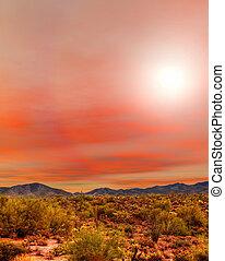 日の出, sonora の 砂漠