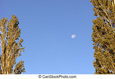 日光, 月