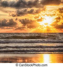 日出, 在中, the, 海