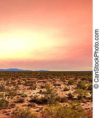 日出, sonora 沙漠