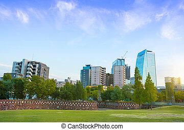 日当たりが良い, 公園, 日, 中央である, japan.