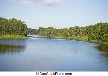 日当たりが良い, 川, 森林, 日
