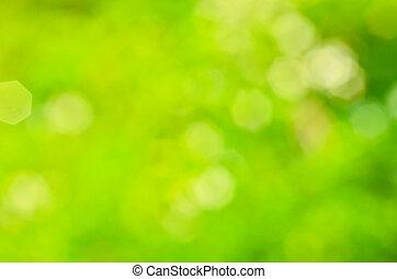 日当たりが良い, 抽象的, 緑, 自然, 背景