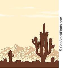 日没, サボテン, 砂漠