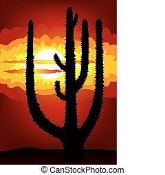 日没, ベクトル, -, メキシコ\