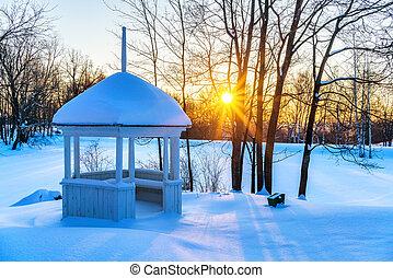 日没, 公園, 冬, カラフルである