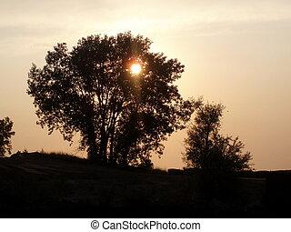 日没, 木