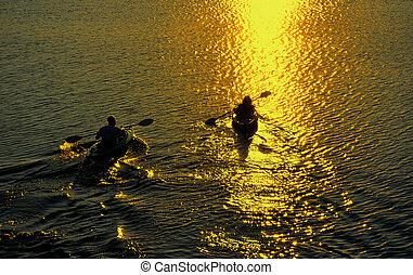日落, 妇女, kayaking, 人
