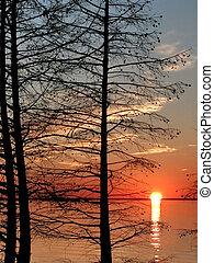 日落, monticello, 南方, 水库, 卡罗来纳