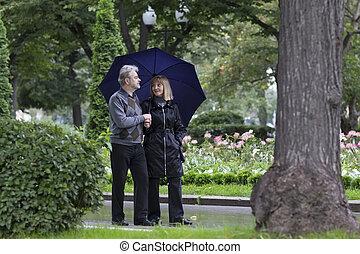 日, 恋人, 成長した, 歩くこと, 公園, 雨