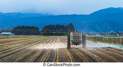 早く, スプレーをかける, 収穫, 朝