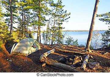 早晨, 遮蔽, 上, a, 荒野, 營地
