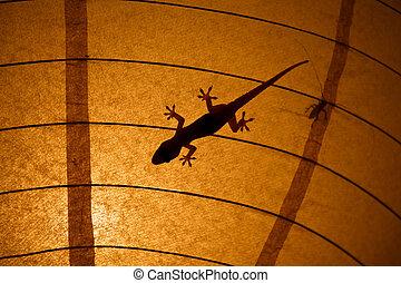 昆虫, シルエット, gecko, ランプのかさ