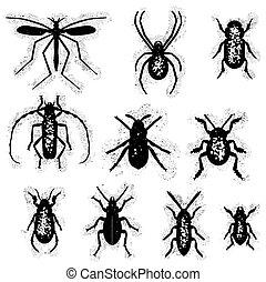 昆虫, セット, 汚い