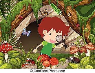 昆虫, 男の子, 見る, 森林