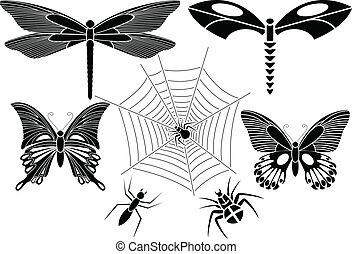 昆虫, 集合