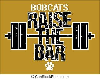 昇給, バー, bobcats