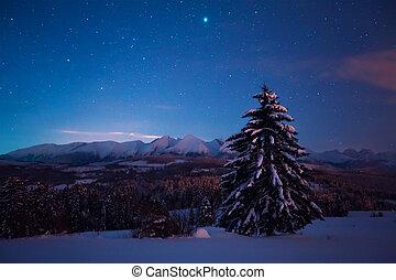 星が多い空, 風景, 夜