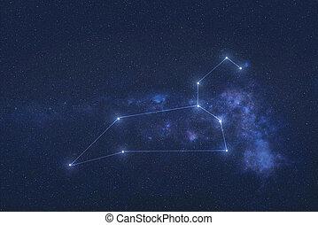 星座, しし座, 外宇宙
