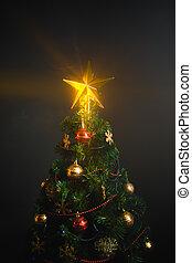 星, 木, 暗い背景, 光沢がある, クリスマス
