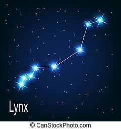 """星, sky., 插圖, 矢量, 夜晚, 星座, """"lynx"""""""