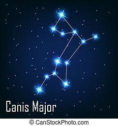 """"""", 星, sky., canis, 插圖, major"""", 矢量, 夜晚, 星座"""