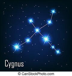 """"""", 星, sky., cygnus"""", 插圖, 矢量, 夜晚, 星座"""