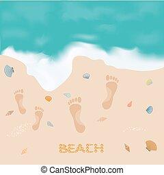 映像, 殻, 足跡, 碑文, 砂の 海