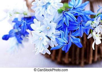 春の花, 最初に