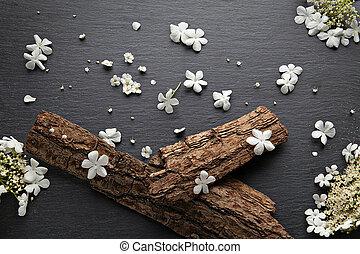 春の花, 芸術, 背景