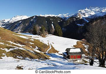 春天, 在中, braunwald, 瑞士