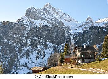 春天, 在中, braunwald, 著名, 瑞士, 滑雪, 求助