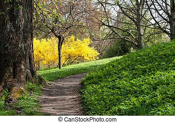 春天, 在, 瑞典