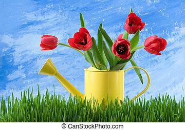 春天, 生活, 仍然