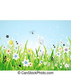 春天, 草地, 美丽