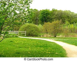 春天, 道路, 国家