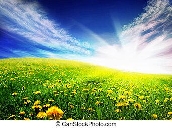 春天, 風景