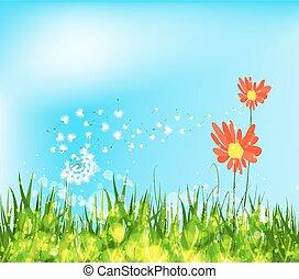 春, ひまわり, 到来
