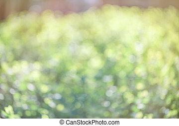 春, ぼんやりさせられた, バックグラウンド。, 緑