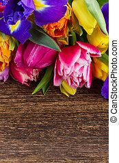 春, アイリス, チューリップ