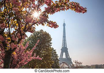 春, エッフェル, パリ, 木, フランス, タワー
