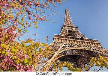 春, タワー, の間, フランス, エッフェル, 時間, パリ