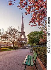 春, タワー, フランス, エッフェル, 木, パリ