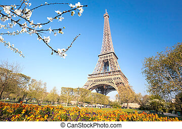 春, パリ, フランス, タワー, 木, エッフェル